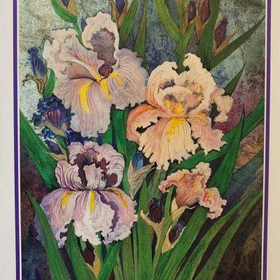 Note Card Iris