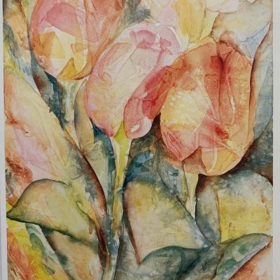 Note Card Tulips